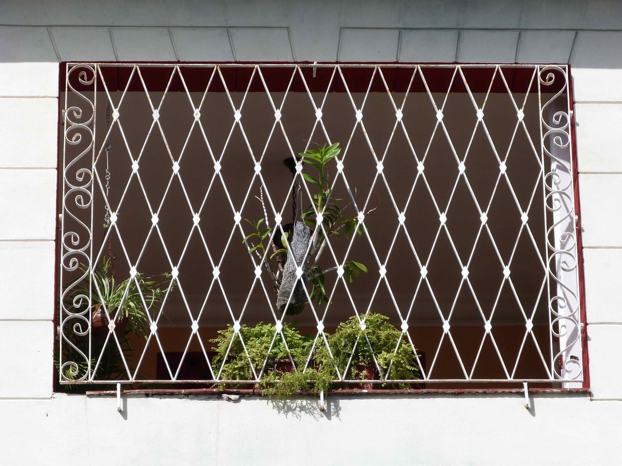 Las rejas de la terraza